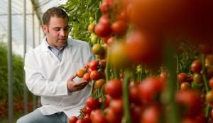 Tarımsal biyoteknoloji ürünleri konusunda dünyada ve Türkiye'de risk algısı